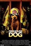 Suns - ugunsdzēsējs, Todd Holland