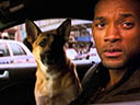 I Am Legend movie - Picture 14