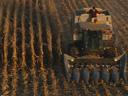 Король кукурузы -
