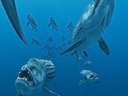 Sea Monsters: a Prehistoric Adventure movie - Picture 1