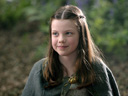 The Chronicles of Narnia: Prince Caspian movie - Picture 15
