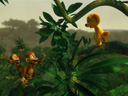 Jungledyret Hugo movie - Picture 5