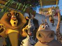 Madagascar 2: Escape 2 Africa movie - Picture 1