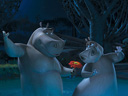 Madagascar 2: Escape 2 Africa movie - Picture 4
