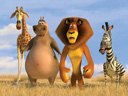 Madagascar 2: Escape 2 Africa movie - Picture 6
