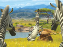 Madagascar 2: Escape 2 Africa movie - Picture 7