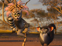 Madagascar 2: Escape 2 Africa movie - Picture 8
