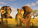 Madagascar 2: Escape 2 Africa movie - Picture 12