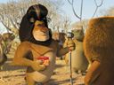 Madagascar 2: Escape 2 Africa movie - Picture 19