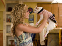 Beverly Hills Chihuahua movie - Picture 3