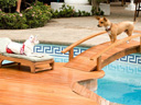 Beverly Hills Chihuahua movie - Picture 13