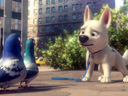 Bolt movie - Picture 13