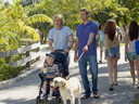 Marley and Me movie - Picture 1