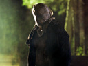 Friday the 13th movie - Picture 1