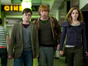 Harry Potter and the Deathly Hallows: Part I movie - Picture 2