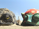 Rango movie - Picture 5