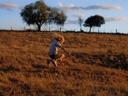 Mūsu tēvs, kas mīti kokā - Tom Russell , Gabriel Gotting