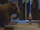 Zookeeper movie - Picture 15