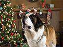 Bēthovena Ziemassvētku piedzīvojums - Munro Chambers , Kim Rhodes