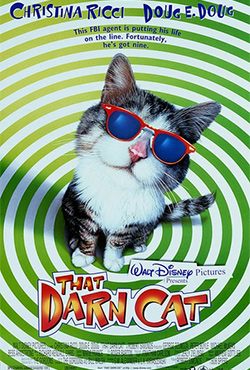 That Darn Cat - Bob Spiers