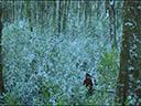 Охота на дикарей - Tioreore Ngatai-Melbourne , Oscar Kightley
