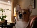 Suņa dzīves jēga - K.J. Apa , Bryce Gheisar