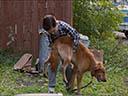Suņa dzīves jēga - Luke Kirby , Gabrielle Rose