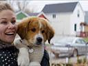 Suņa dzīves jēga - Pooch Hall , John Ortiz