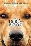 A Dog's Purpose, Lasse Hallstrom