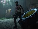 Logans -