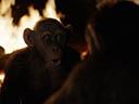 Планета обезьян: Война -