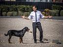 Suņu neiespējamā misija - Flaminia Cinque , Omar Chaparro