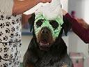 Suņu neiespējamā misija - Omar Chaparro