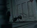 Minuscule - Mandibles from Far Away movie - Picture 2