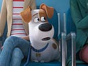 The Secret Life of Pets 2 movie - Picture 1