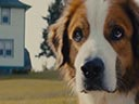 A Dog's Journey movie - Picture 2