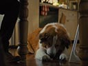 A Dog's Journey movie - Picture 6