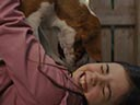A Dog's Journey movie - Picture 10